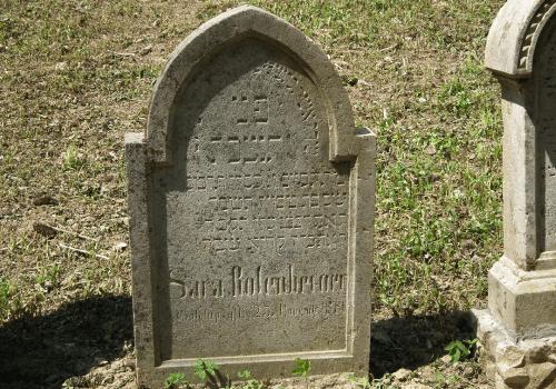 Jewish Genealogical Society of Greater Orlando Membership Gallery Image12